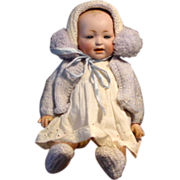 German Bisque Head Toddler by Kestner 11""