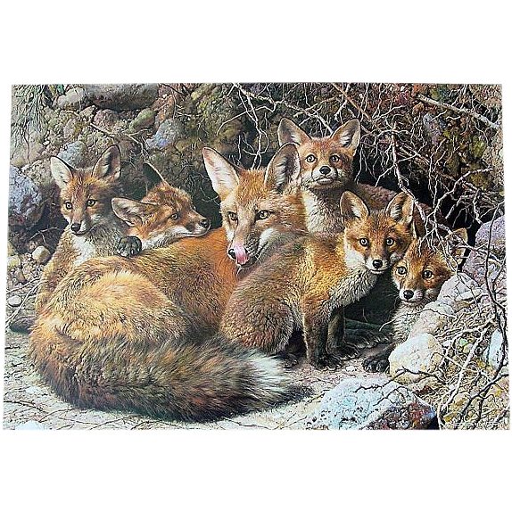 """Signed & Numbered """"Full House Fox Family"""" by Carl Brenders Limited Edition  ."""