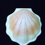 Superb Scallop Shell 21 Carat Gold Russian Powder Compact