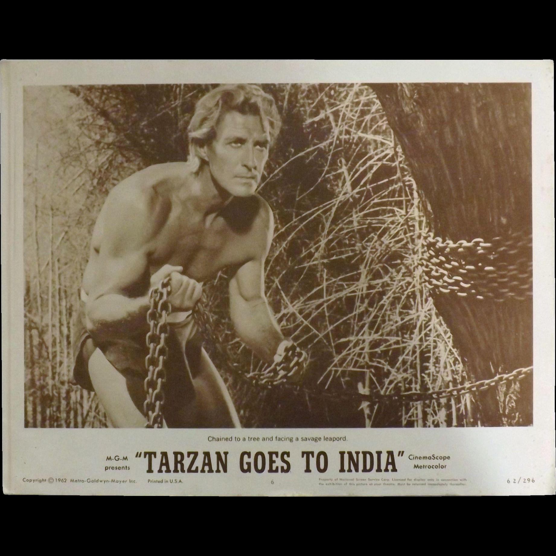 TARZAN Goes To India - 2 x Lobby Cards &  6 x Photo Stills