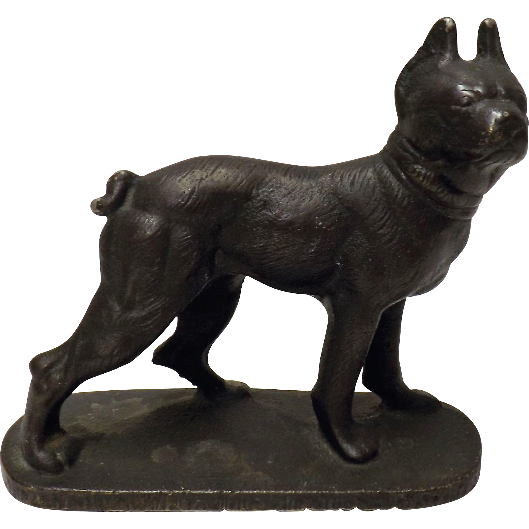 Geschutzt Cold Painted Bronze Dog - Austria /Germany Circa 1850-60