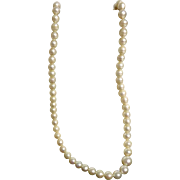 Mikado Boxed Cultured Pearl Necklace - Circa 1960