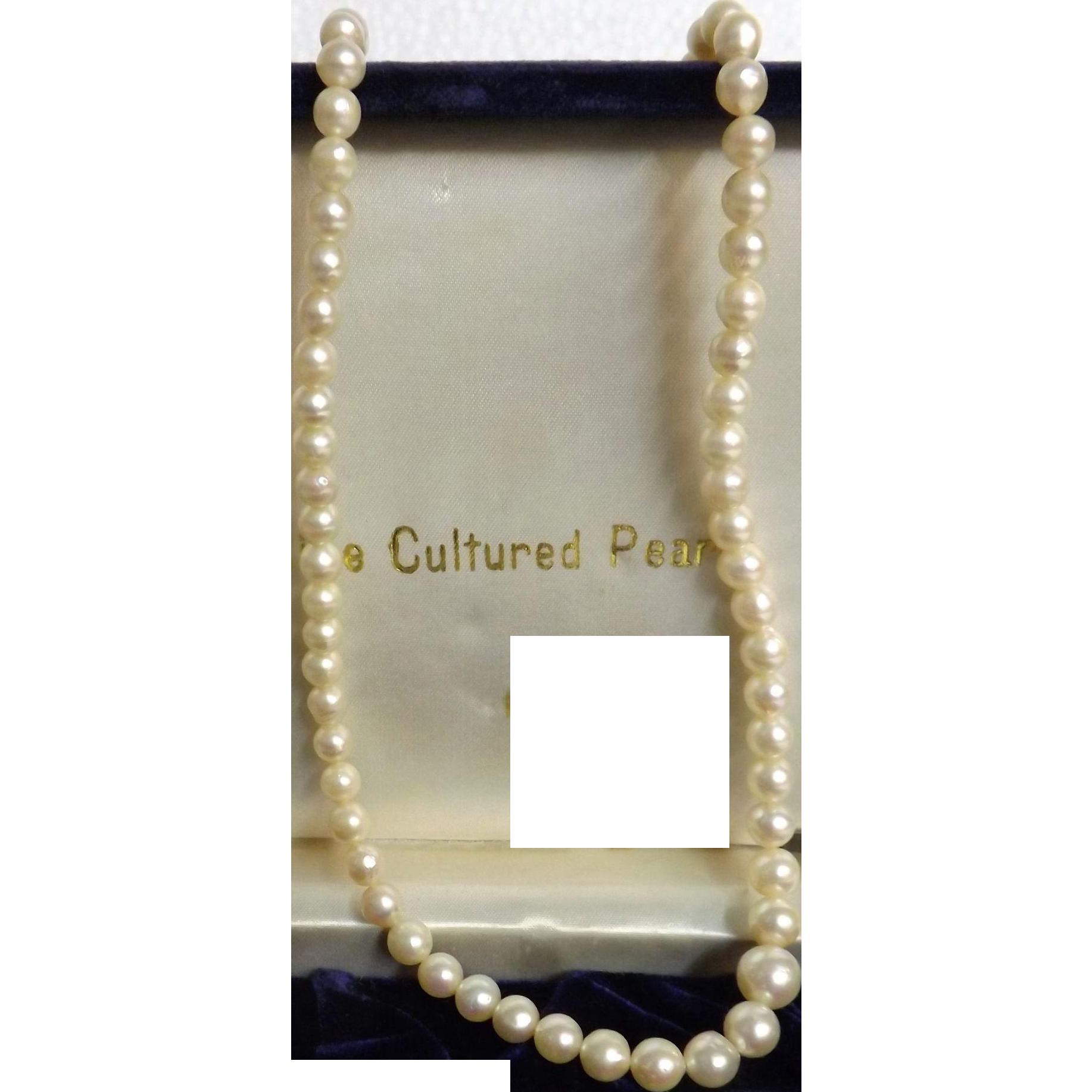 Mikado Boxed Cultured Pearl Necklace - Circa 1960