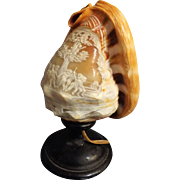 Italian Cameo Shell Lamp - Circa 1920-1930