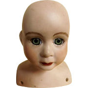A Kohler German Made Porcelain Doll head & Shoulders