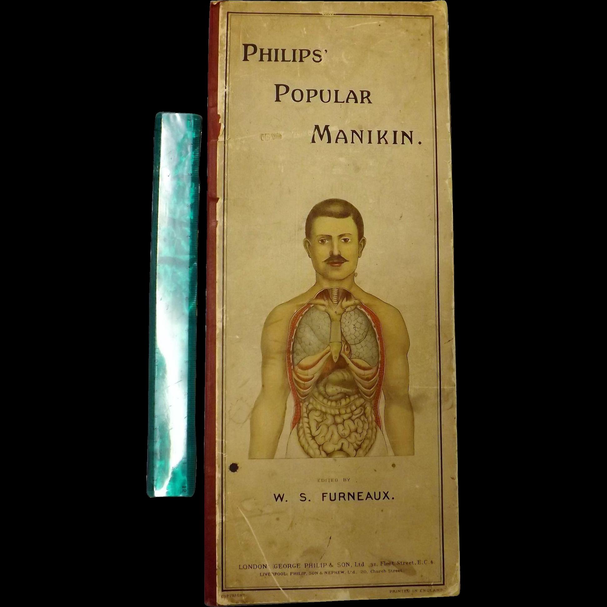 PHILIPS' Popular Manikin - Edited By W.S.Furneaux - Circa 1900