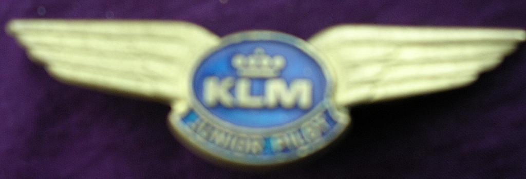Vintage KLM Junior Pilot Metal Wings Badge