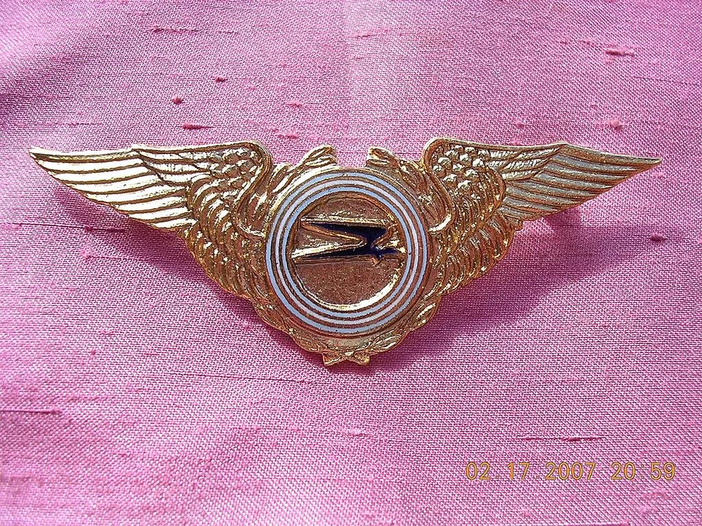 Vintage Argintinas Aerolinas Pilot Wings Badge