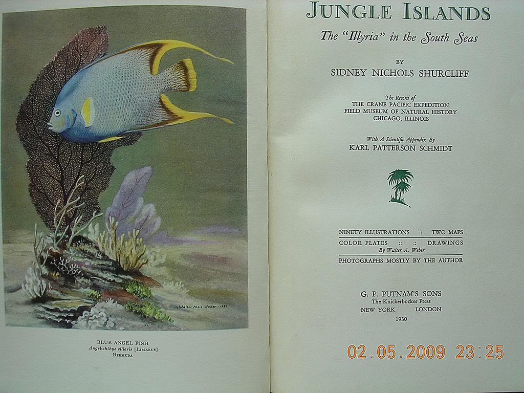JUNGLE Islands First Edition 1930