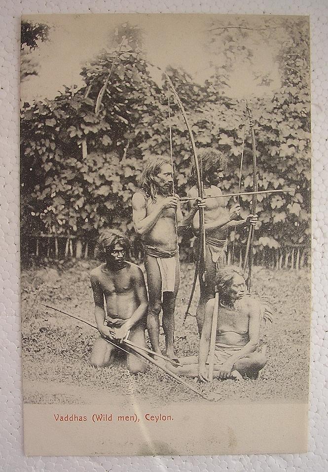 ceylon men Ceylon swim is an australian based mens swim shorts / board shorts label with an distinct focus on premium materials and unparalleled style.
