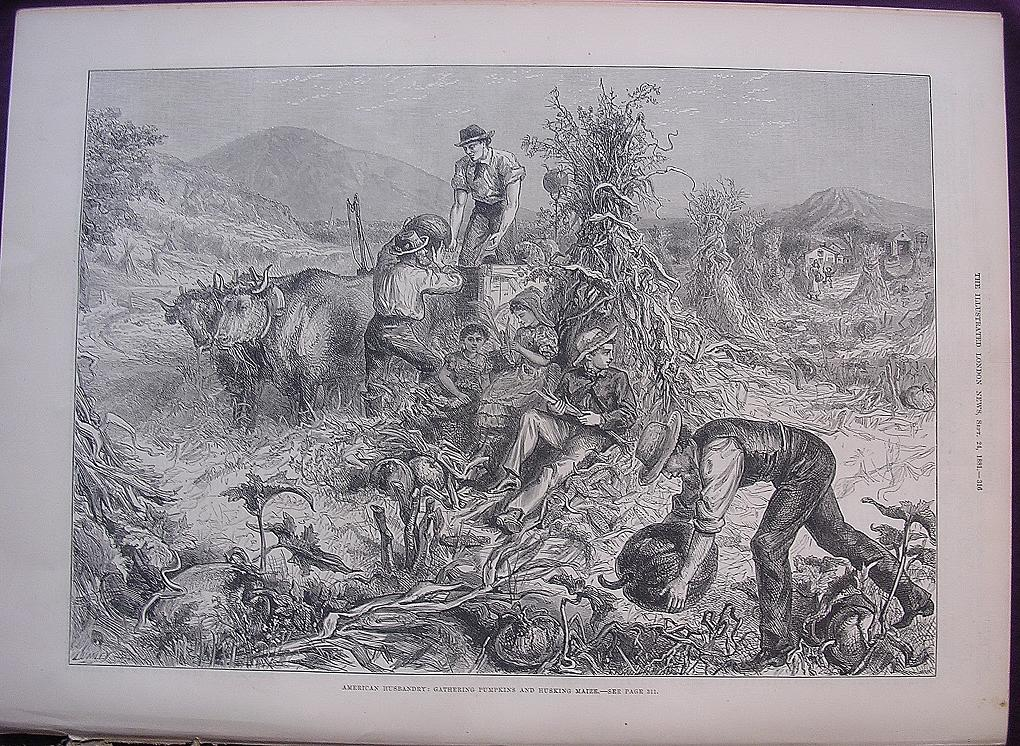 'AMERICAN HUSBANDRY: Gathering Pumpkins And Husking Maize' - Illustrated London News Sept. 24 1881