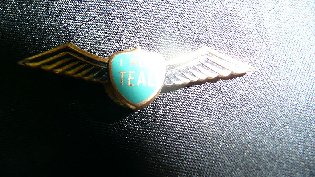 TEAL Airlines New Zealand 'I Fly Teal' Wings Badge