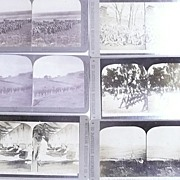 Six  BOER WAR Stereoscopic Cards