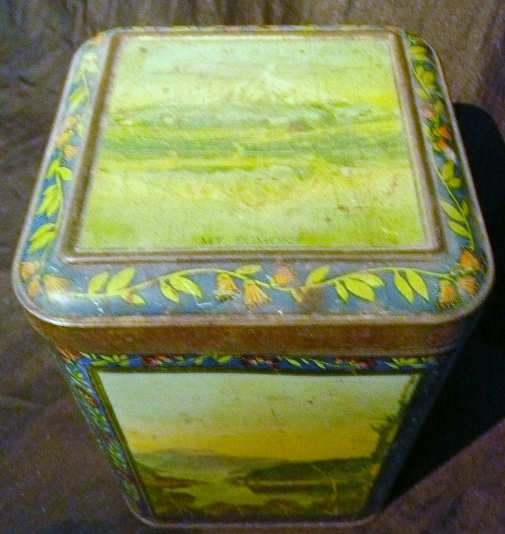 A New Zealand Scenes 'AMBER TIPS' Tea Tin