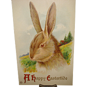 Easter Postcard with Bunny Rabbit