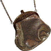 Vintage Mesh Purse Lumured