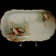 Limoges Porcelain Tray