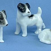 1930s Erphila Germany Fox Terrier Jack Russell pups