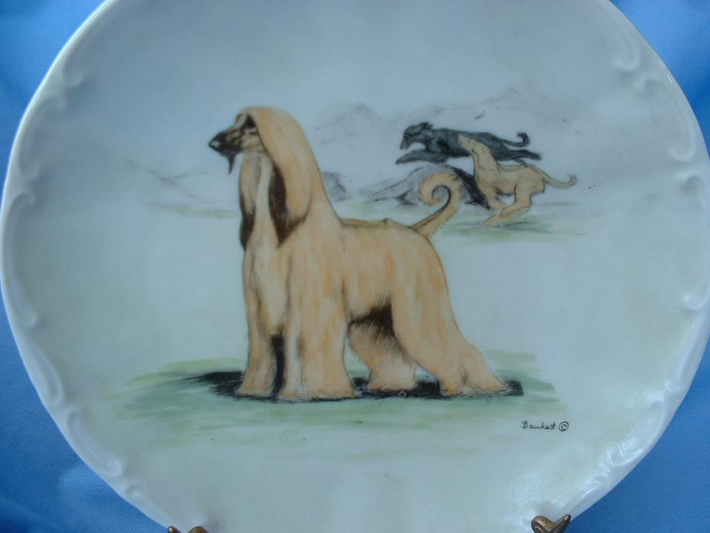 hand painted Afghan Hound  LE  # 150 plate