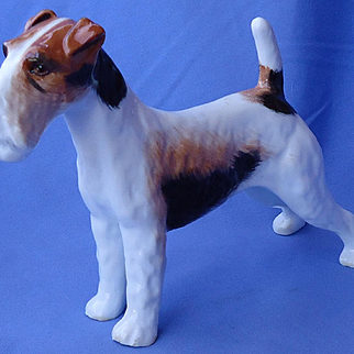 Wire Fox terrier Jack Russell dog Alton England 8""