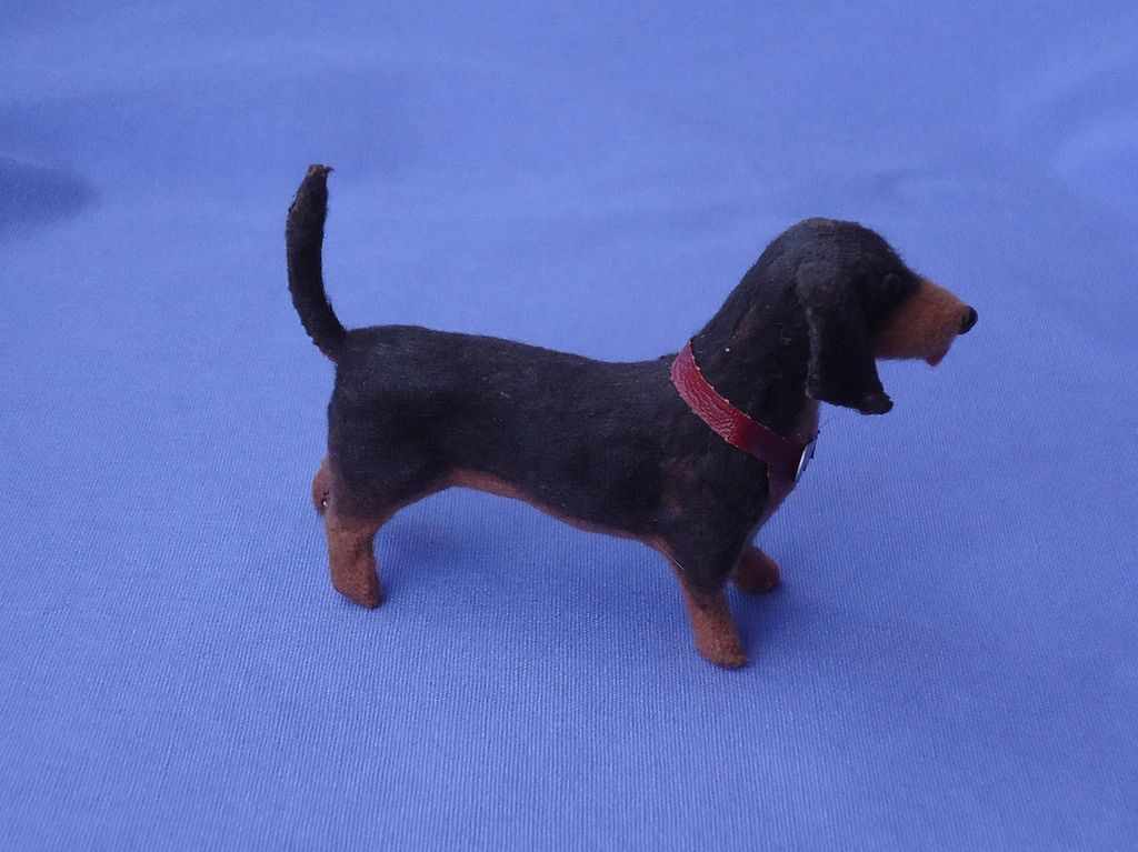 a description of dachshund from germany About the breed general description the dachshund was developed in germany over a period of several hundred years it is a small, compact hound dog whose legs are short and body is long.