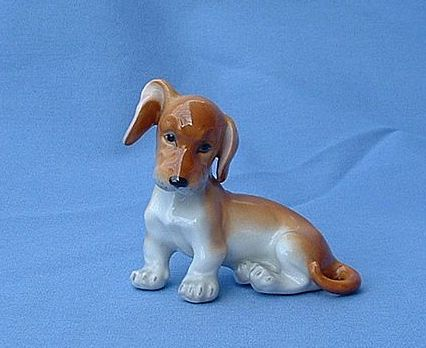precious puppy Dachshund  Augarten Austria