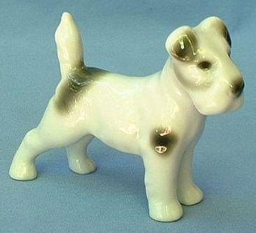 1909 AVP Germany fox terrier Jack Russell Schnauzer dog