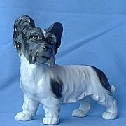 """1920s Skye silky terrier Briard 7"""" Germany"""