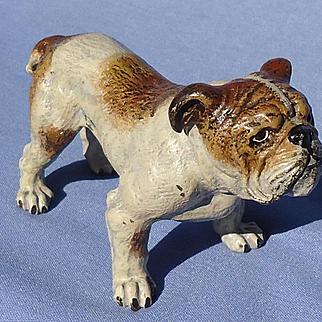 "Vienna Bronze brindle English Bulldog 3"" marked"