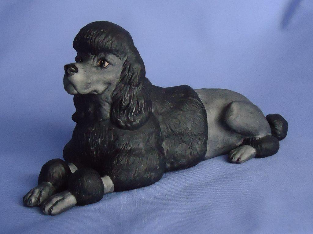 """black poodle Boehm 7"""""""