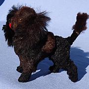 "antique black Poodle salon dog French fashion doll Germany 3"""