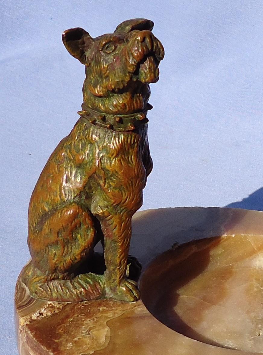 bronze Fox terrier Schnauzer dog  MERIH France
