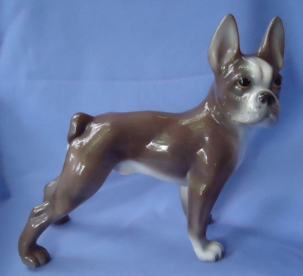 Boston terrier French bulldog Zaccagnini Italy 12""