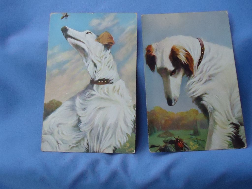 vintage Borzoi postcards Germany
