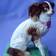 antique bisque Cavalier King Charles spaniel  Germany