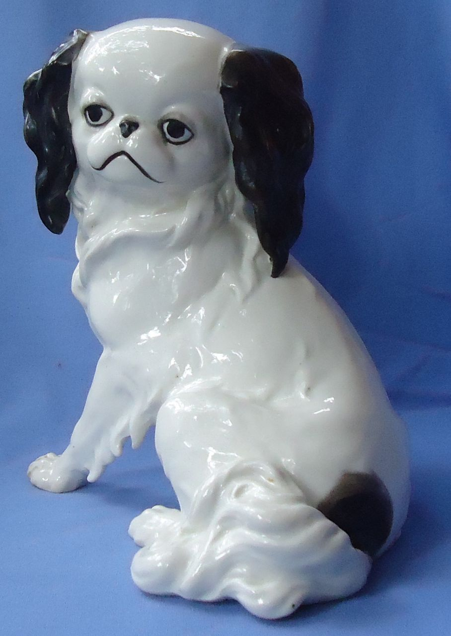 1950s Cavalier King Charles spaniel Japanese Chin dog Germany 10""