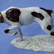 German Shorthaired pointer hunting dog Cacciapuoti Italy 7""