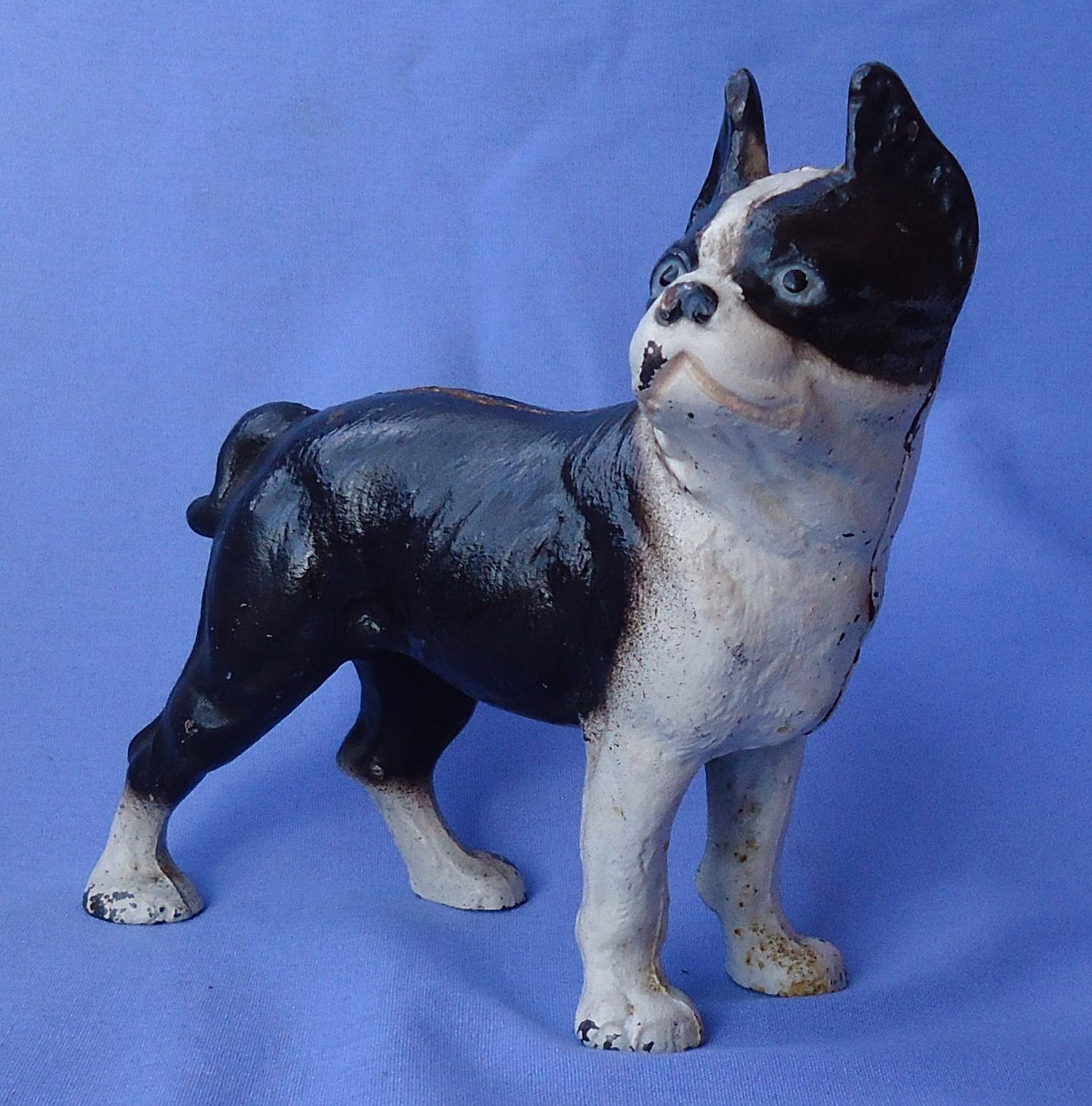 authentic Hubley cast iron Boston terrier bank 7""