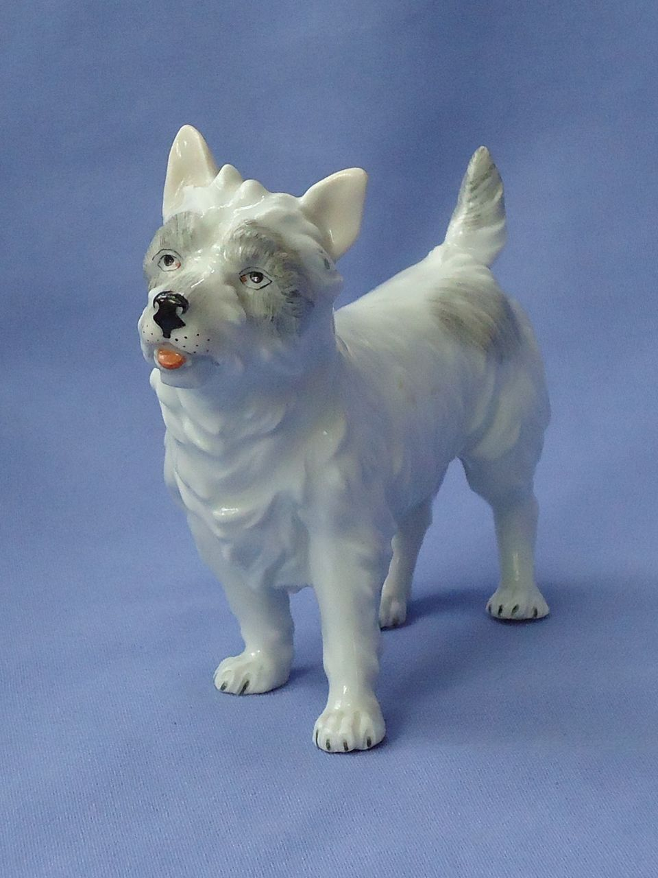 vintage  Cairn /  West Highland terrier Dresden Germany