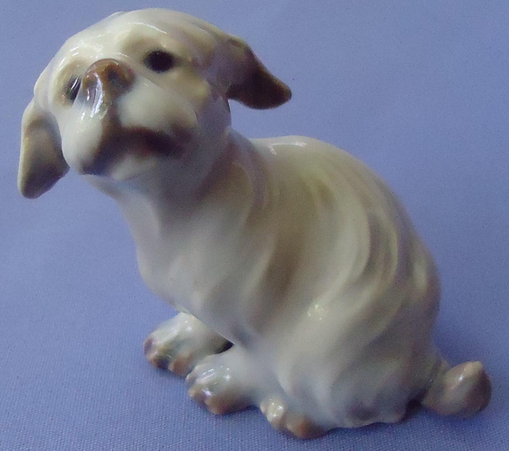 "Dahl Jensen Belgian Brussels Griffon  Maltese terrier Denmark dog 3"""