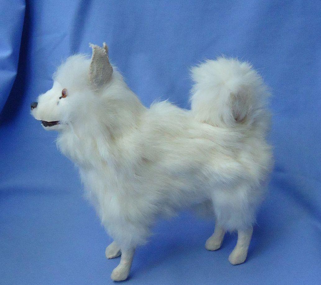 "antique Spitz Samoyed fur toy  dog growler Germany French fashion doll 7"""
