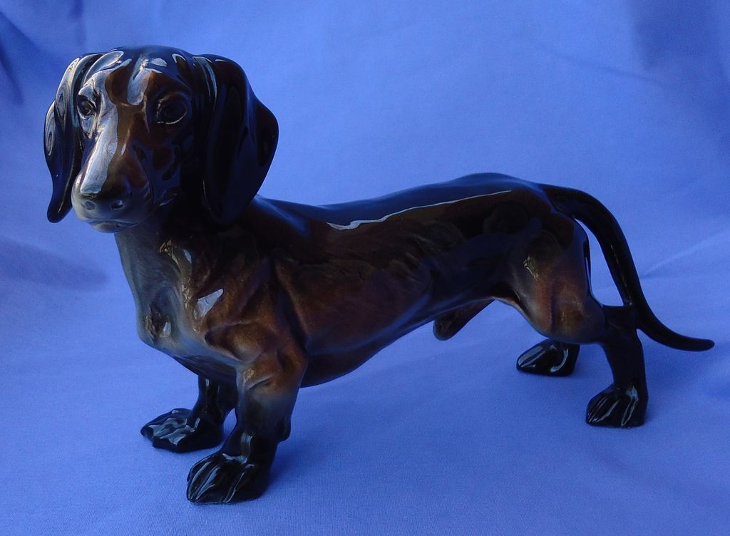 1950s Black / tan Dachshund dog Germany 10""