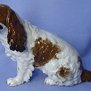 "1930 Rosenthal red English setter Springer Spaniel Field dog 9"" Germany"