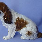"1930 Rosenthal red English setter Springer Spaniel Field dog 9"" Germany"