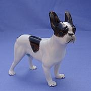 French Bulldog Heubach Germany