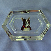 1920 French Bulldog Boston Terrier Hoffman Czechoslovakia