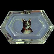 1920 French Bulldog Boston Terrier Hoffman Czechoslovakia