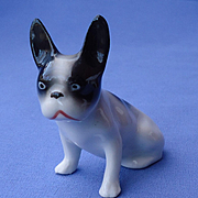 1920 French Bulldog sitting puppy Germany
