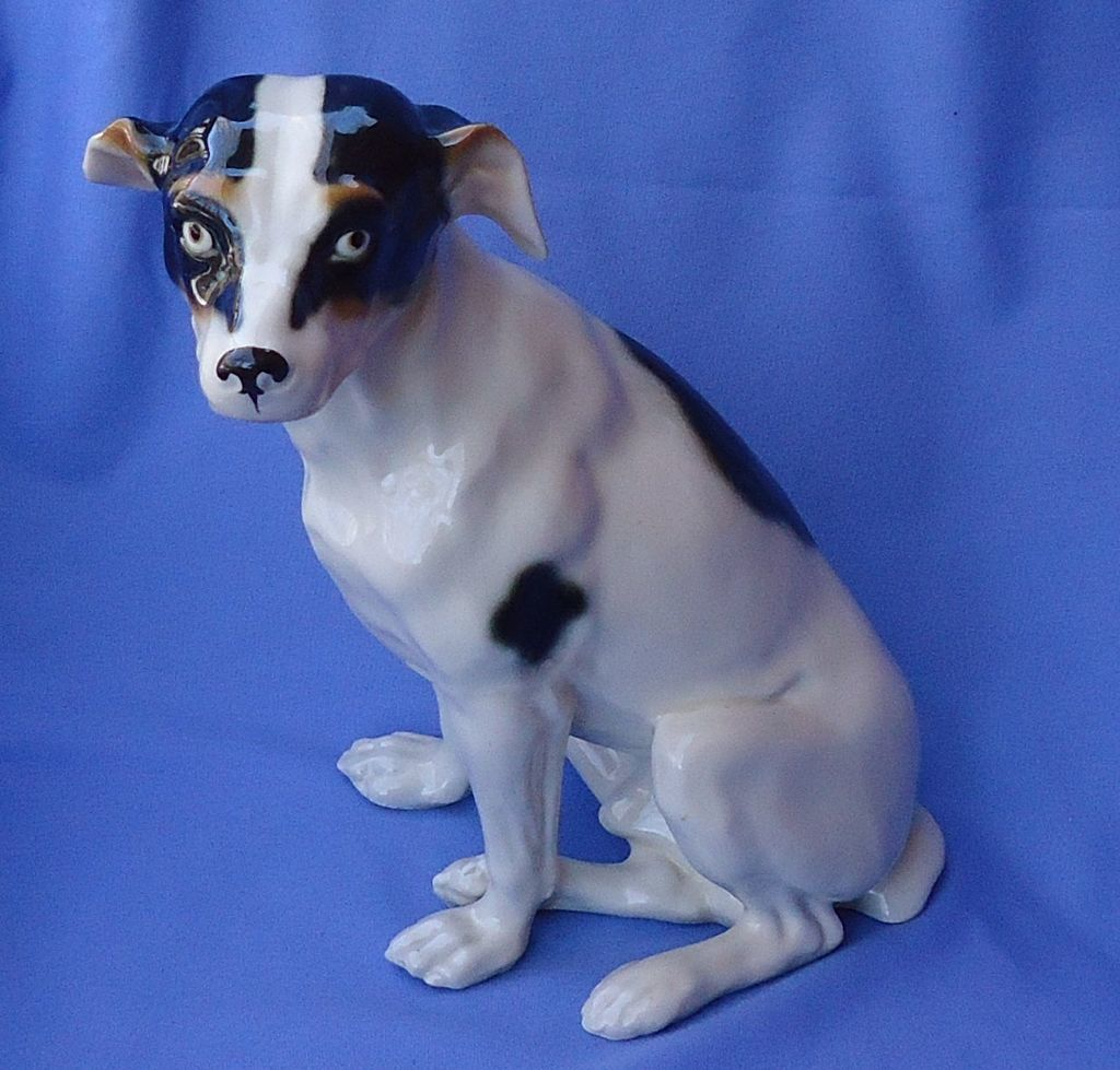 1950s Fox terrier Jack Russell Germany 12""