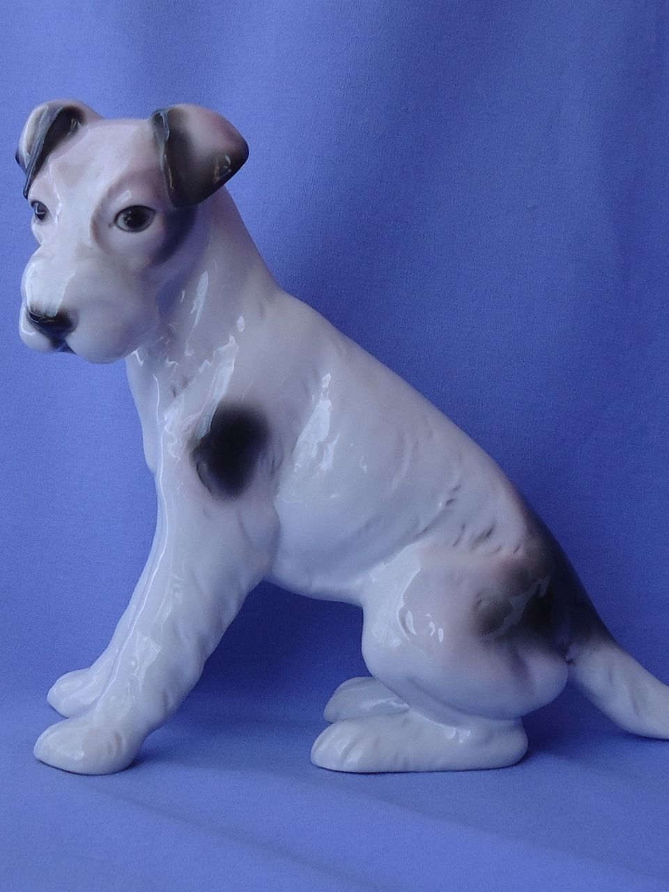 1930s Fox terrier Jack Russell Schnauzer Germany 10""